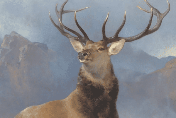 Monarch of the Glen National Galleries Scotland